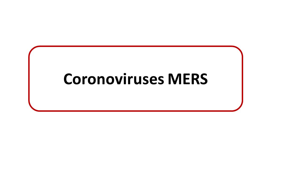 ImmunoKenya2018_Coronavirus_Slide18