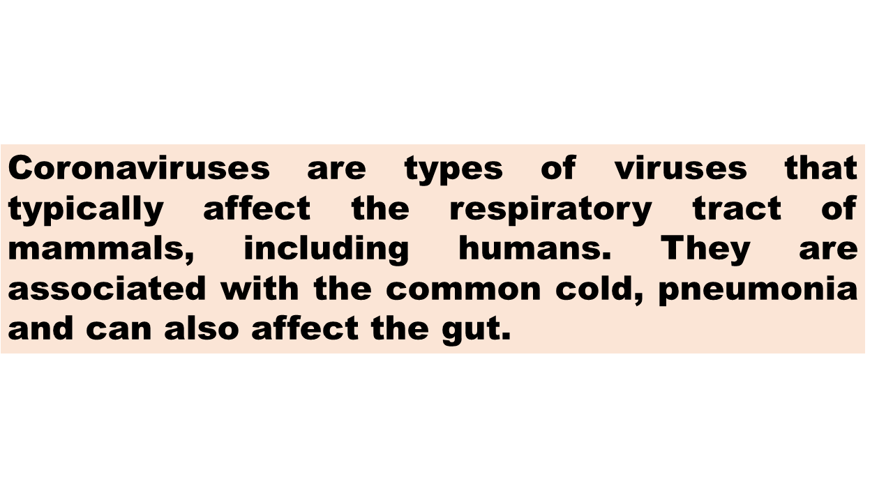 ImmunoKenya2018_Coronavirus_Slide3a