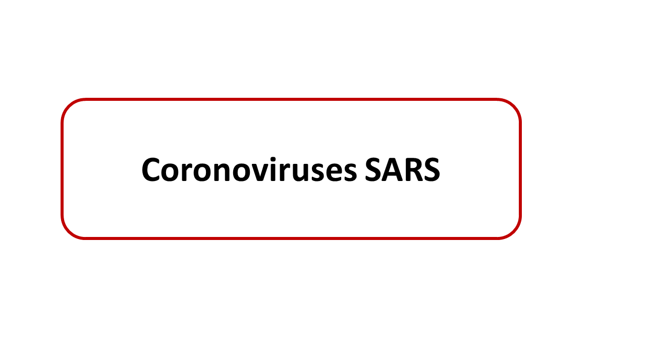 ImmunoKenya2018_Coronavirus_Slide8