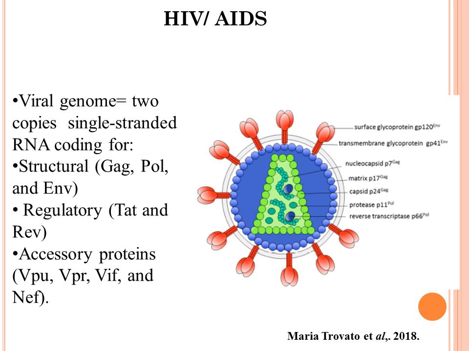 ImmunoKenya2018_HIV_Slide2